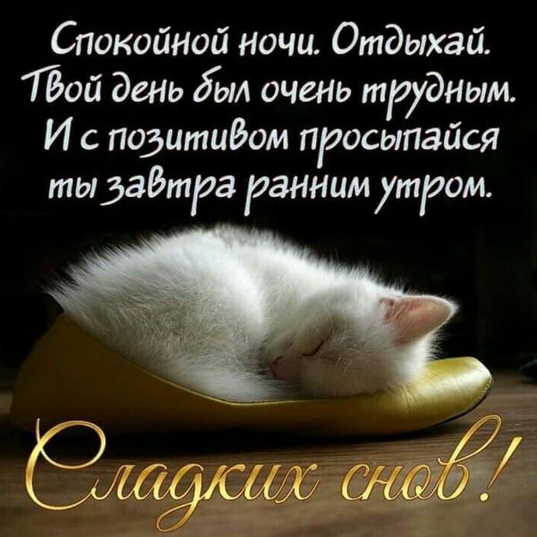пожелания перед сном любимому человеку фоне